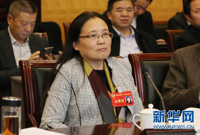 裴成荣:陕西要补齐县域经济短板利用自贸区加快对外开放