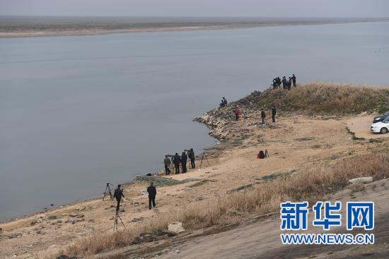 """用爱心织成""""救护网""""——直击鄱阳湖受伤江豚救护"""