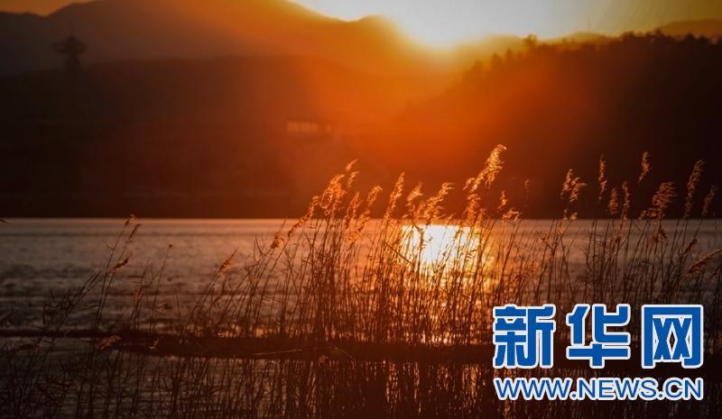云南大理:生态与水鸟的美丽遇见