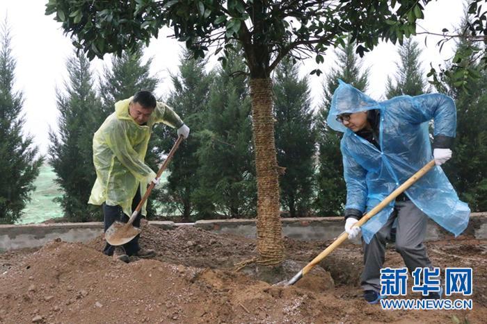 浐灞生态区开展植树周活动 为美丽西安增添新绿
