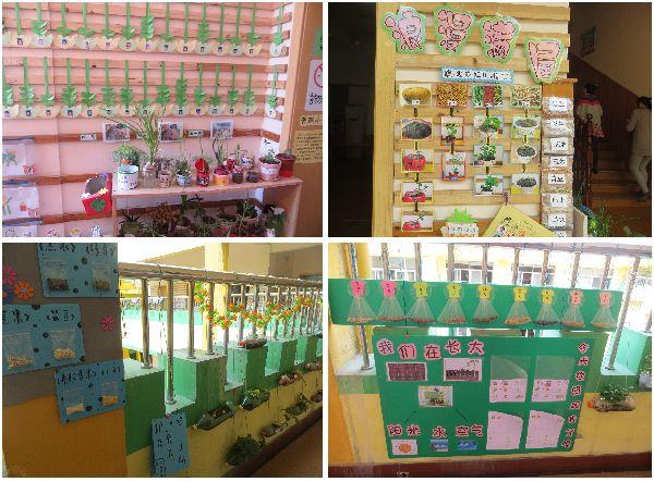 幼儿园区角布置图片:活动区材料7_幼儿园活动区布图片