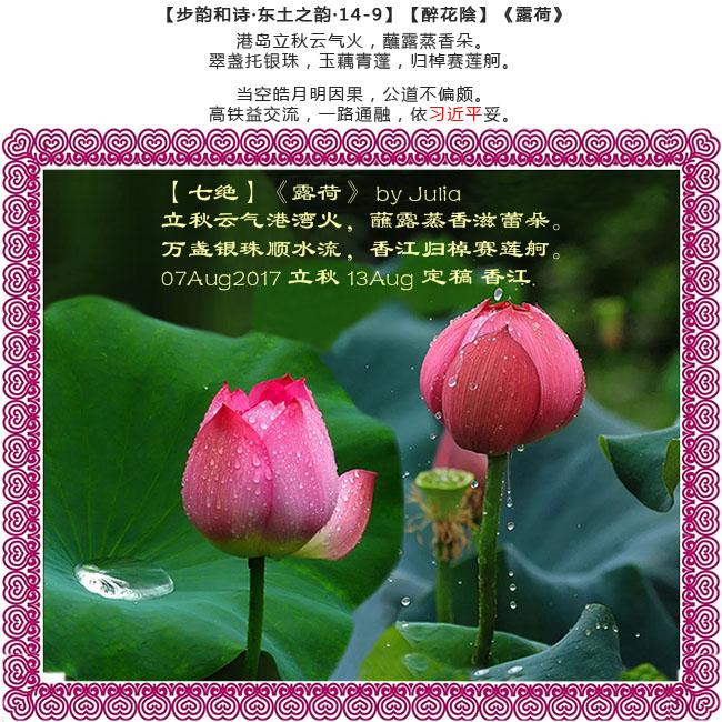 【步韵和诗·东土之韵·14-9】(729)【醉花陰】【七绝】《露荷》by Julia