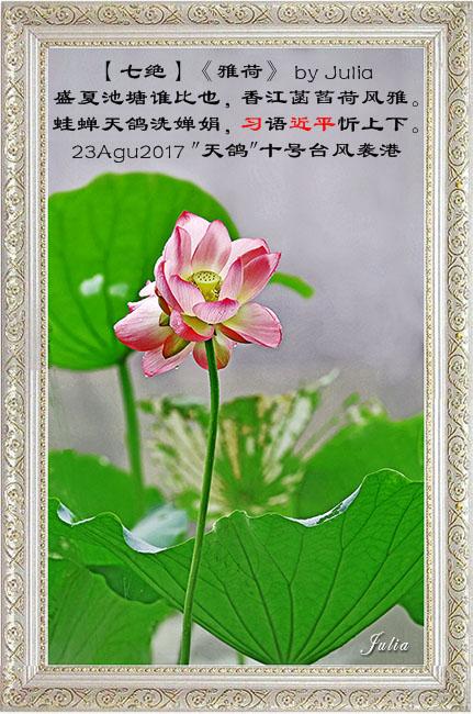 【步韵和诗·东土之韵·14-10】(730)【醉花阴】【七绝】《雅荷》by Julia