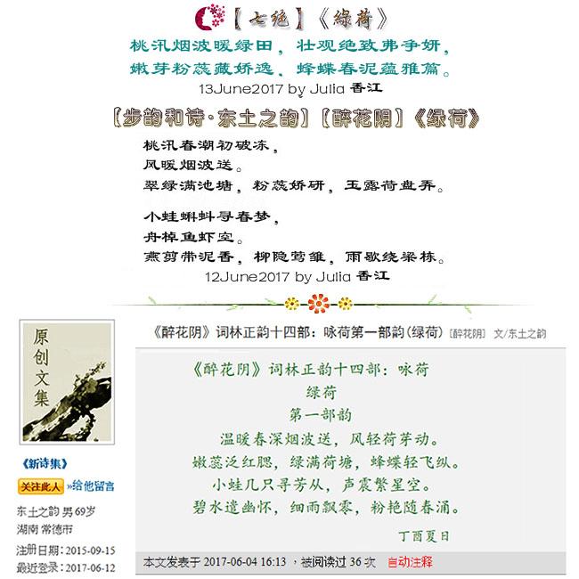 【步韵和诗·东土之韵】(721)【醉花阴】【七绝】《綠荷》by Julia