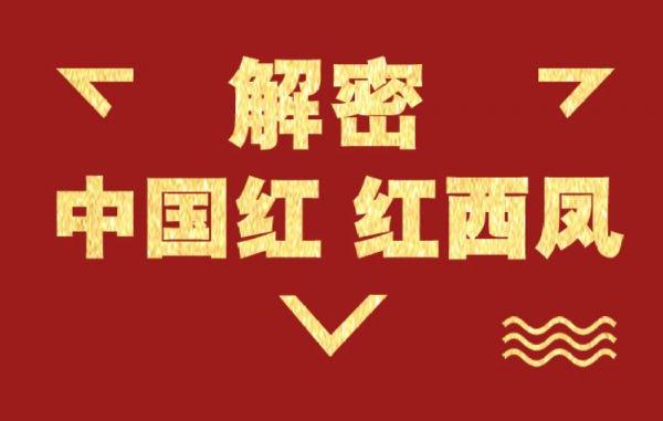 """7个字母解密""""中国红 红西凤"""""""