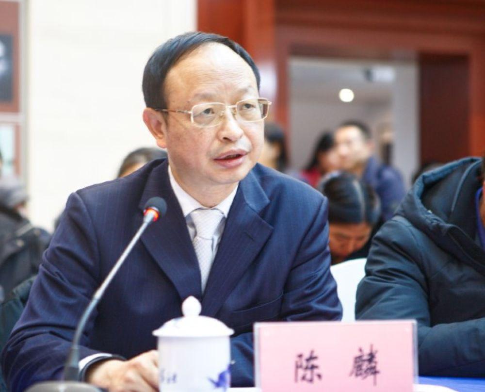陈麟:继续用好新华社民族品牌工程打造贵州品牌