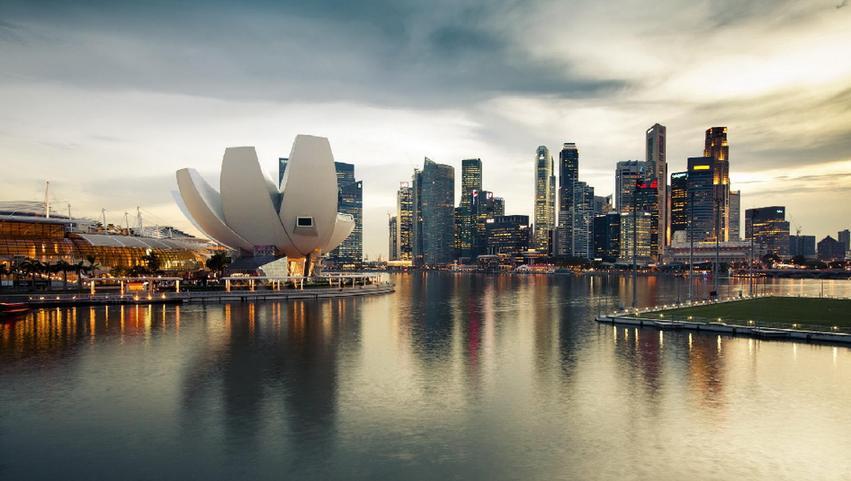 超80家新加坡企业将现身第二届进博会