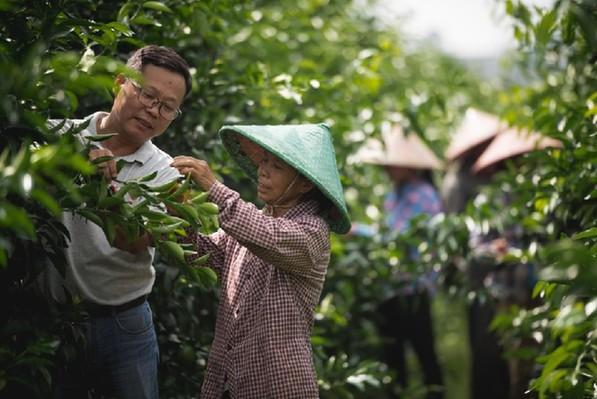 东风公司获第十二届中国企业社会责任峰会杰出企业奖、精准扶贫奖