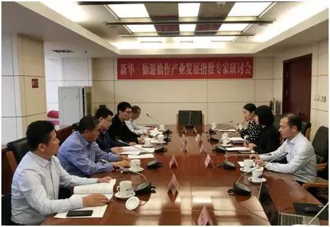 新华·仙游仙作产业发展指数通过专家评审
