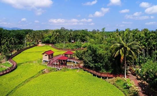 海南:文明生态村创建覆盖近九成自然村