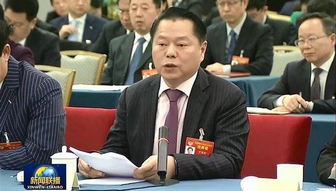 全国政协委员丁佐宏作为工商联界代表发言
