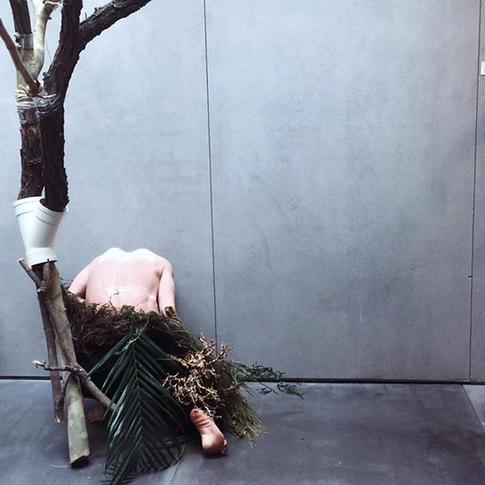 喜见插花艺术展《地山谦》在京开幕