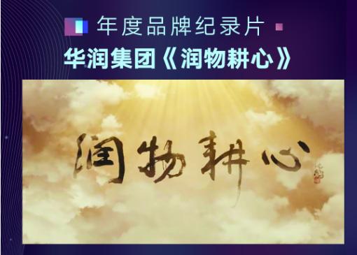 """2019中国视频榜:品牌处在""""出圈与破际""""的十字路口"""