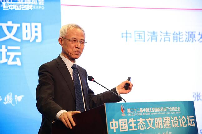 张玉清:中国清洁能源发展面临的形势