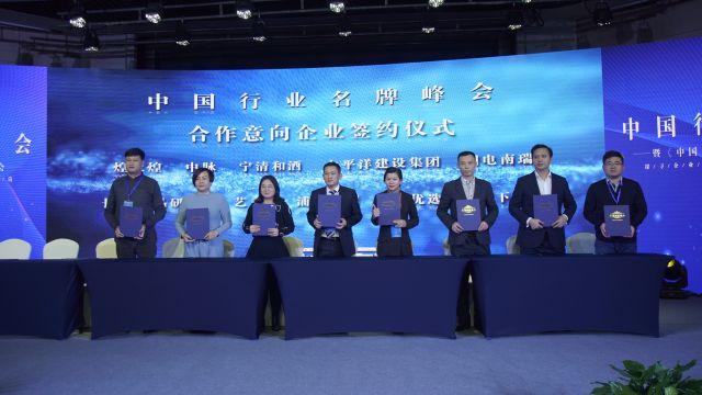 #首届中国行业名牌峰会暨《中国名牌》行业名牌培育计划发布会#企业代表上台与中国名牌签订战略合作意向书