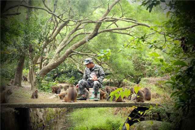 """""""猴王""""刘清伟——孤岛守护29年"""