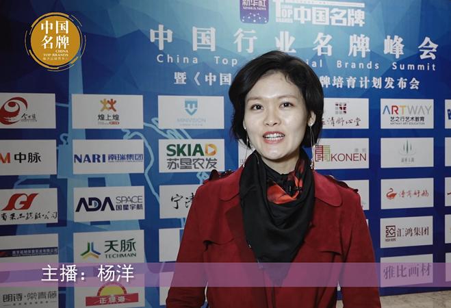 中国行业名牌峰会侧记