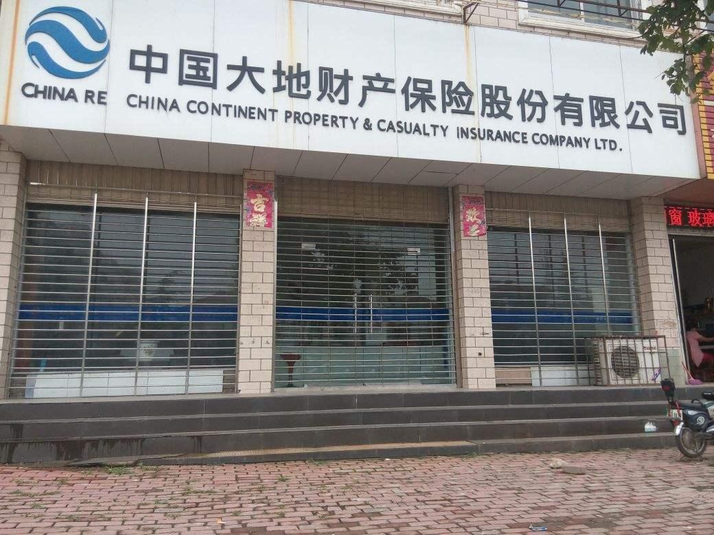 中国大地保险:为进一步加快改革转型步伐奠定基础