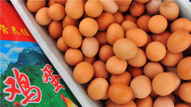 分析:鸡蛋期货难有趋势性上涨行情