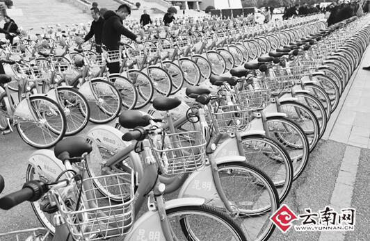 """1200辆""""小红车"""" 亮相昆明 夜间骑行轮胎会反光"""
