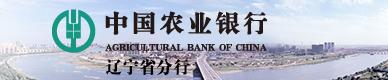 中国农业银行1