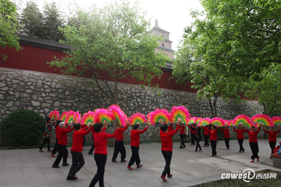 场舞春天里的故事_西安大雁塔:大妈们把广场舞跳成了春天盛开的花