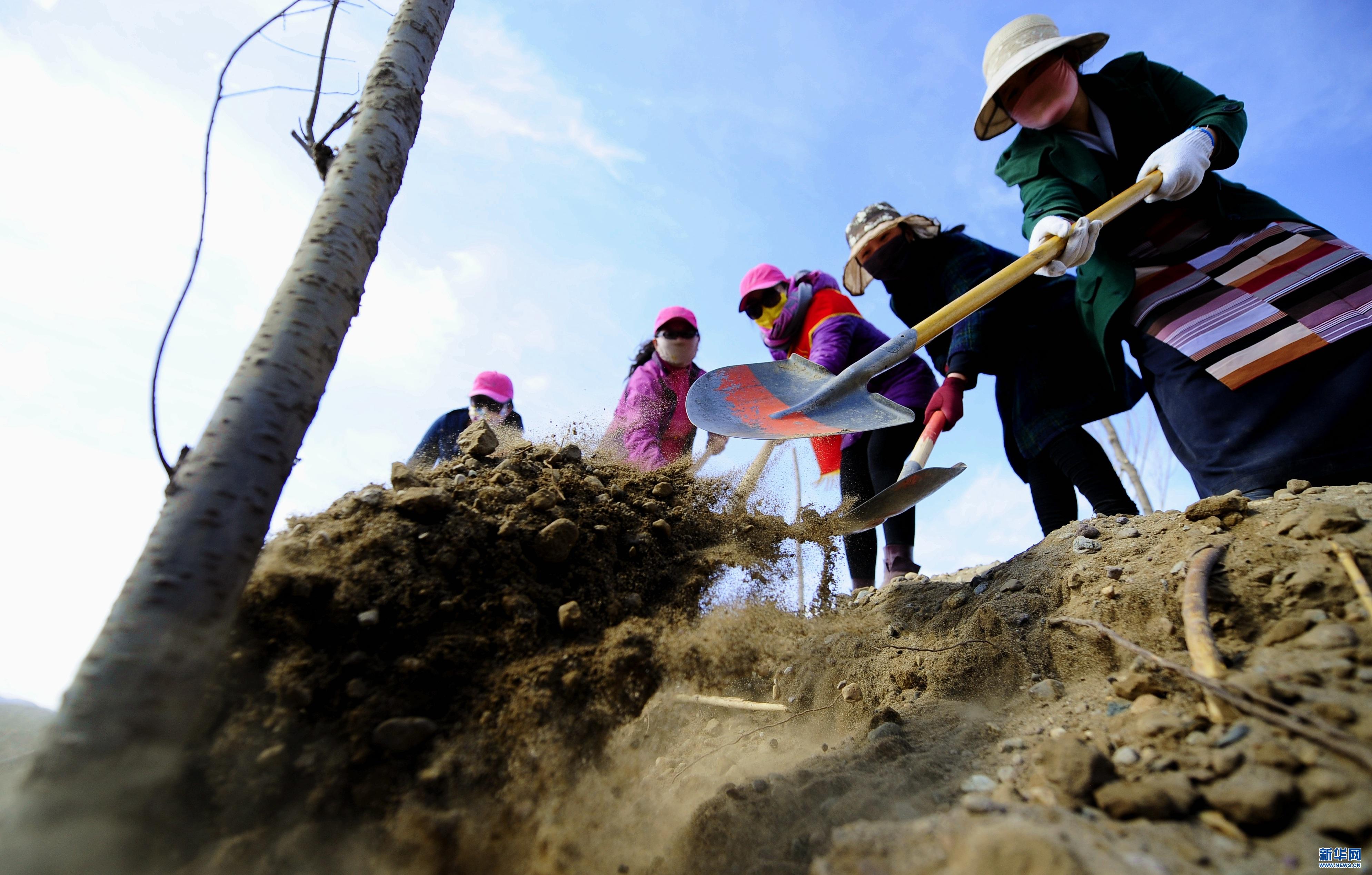 西藏雅江北岸生态示范区建设成果初现