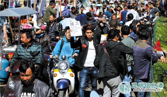 5000求职者挤爆昆明南坝人力资源市场