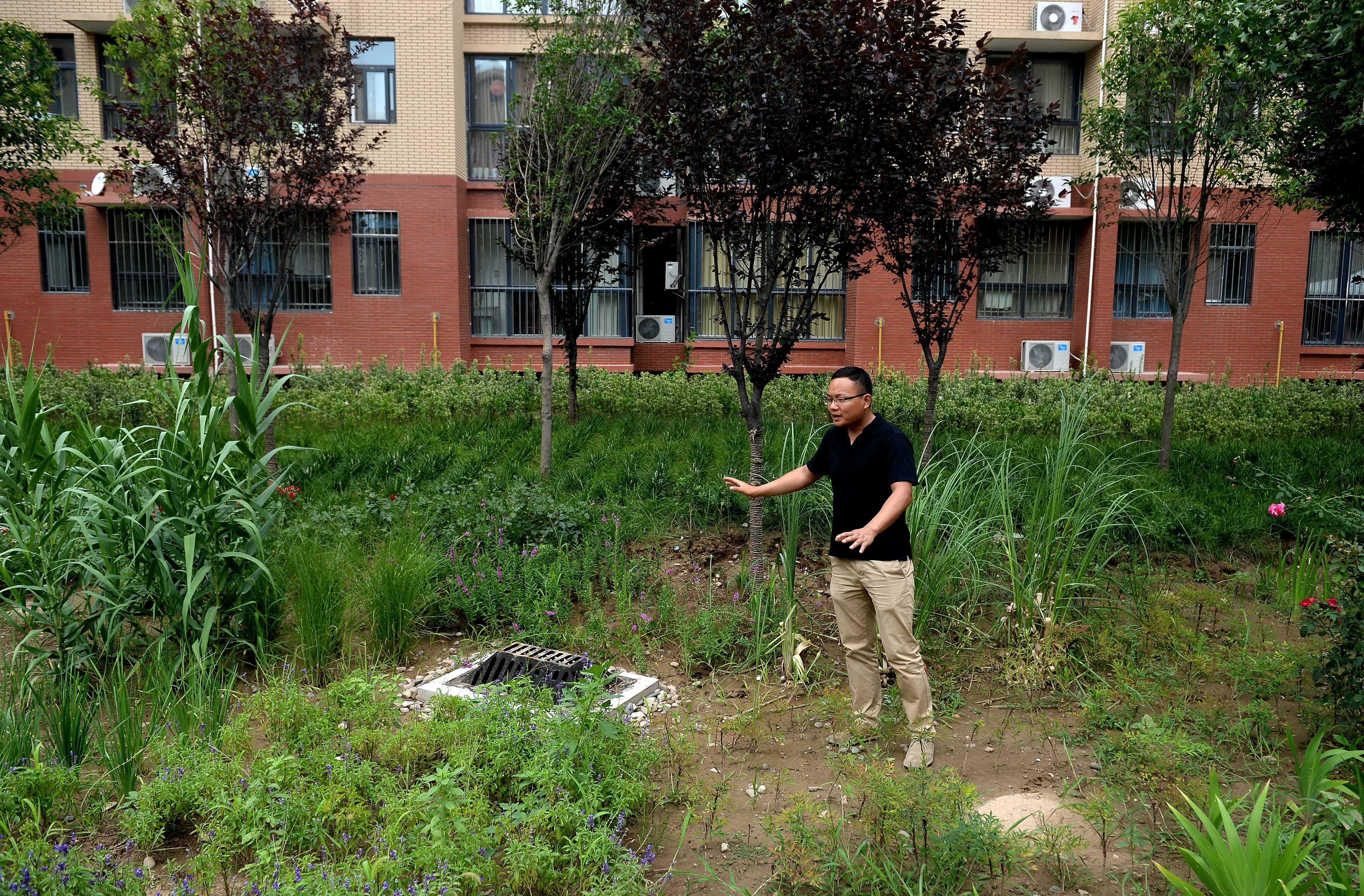 雨水花园-陕西 海绵城市 试点地区安然度过大暴雨袭击图片