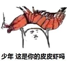 """""""皮皮虾,我们走!"""" 带你走近皮皮虾的世界"""
