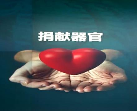 """法轮功""""活摘""""谣言始末(图)"""