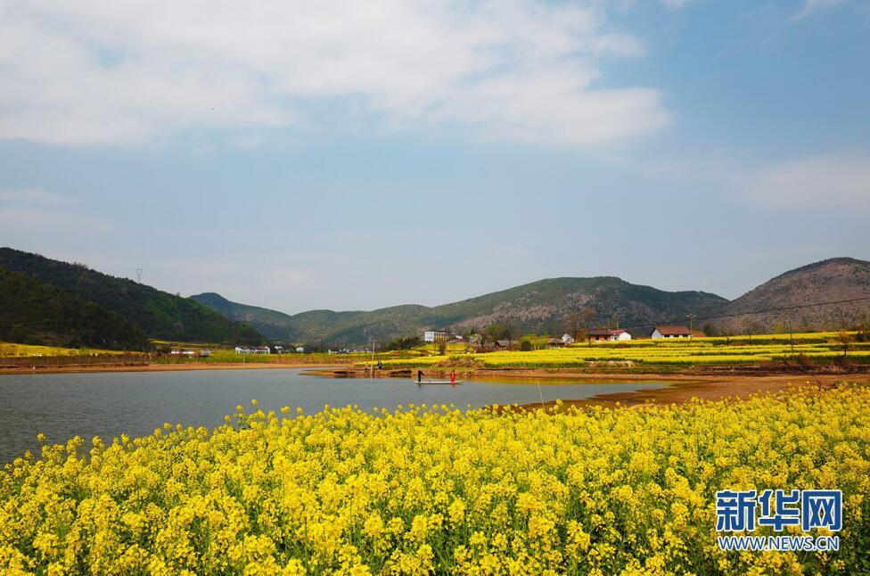 【乐游篇】汉中油菜花节:只看花太单调?特色之旅你值得拥有!