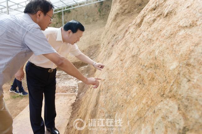 夏宝龙在良渚遗址调研时强调 担负起展示中华五千年文明史