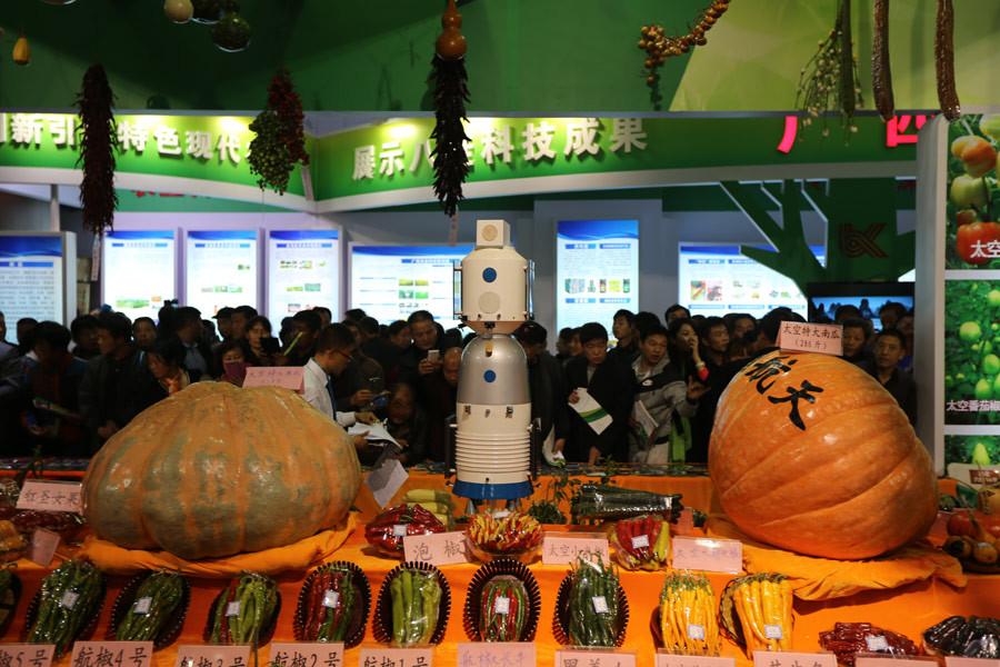 (2015年资料)用镜头记录杨凌农高会 陕西特色展馆人气高涨