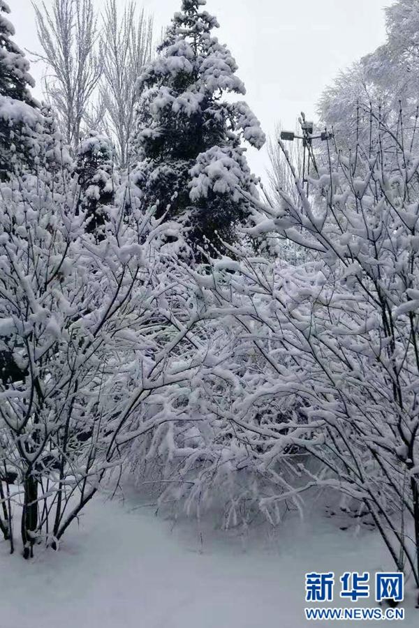 手机摄影:青海大通雪景美如画