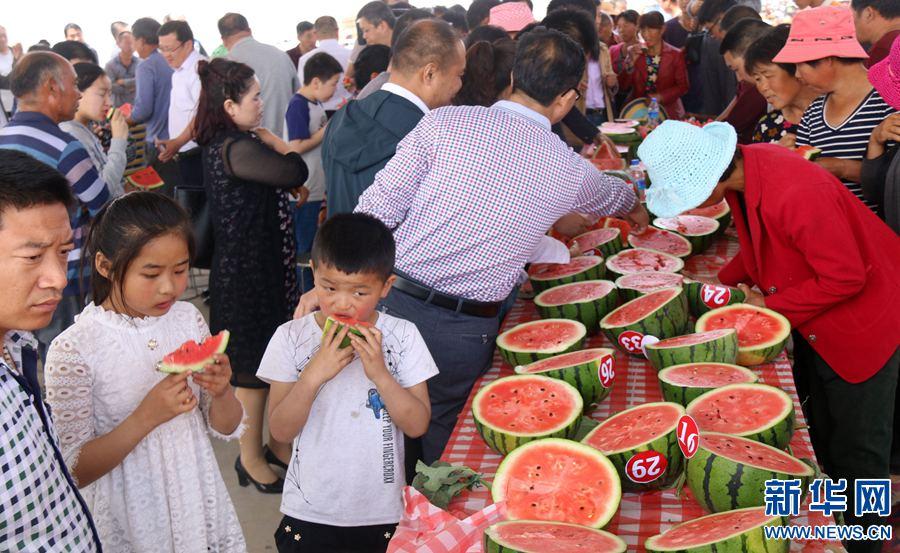 河南内黄:西瓜大赛庆丰收