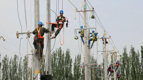 阜新公司:瓜农喜丰收 供电服务棒棒哒
