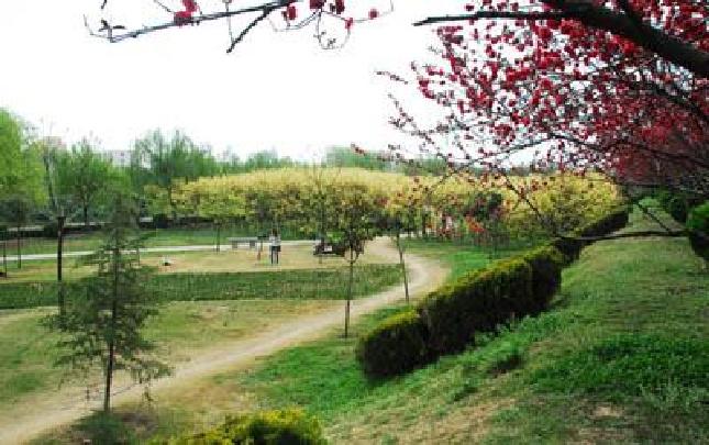 清潩河游园