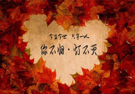 婺源梦里老家:接吻大赛迎甜蜜七夕