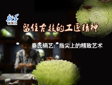【新华融媒汇】留住古技的工匠精神 秦氏娟艺:指尖上的精致艺术