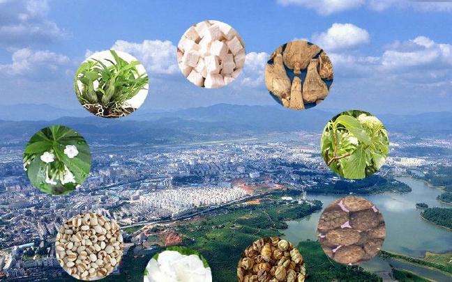 云南:抓住关键 壮大特色优势产业
