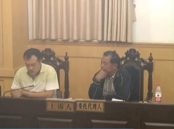 彭涛诉项城市人民政府花园办事处、项城市人民政府土地行政确权决定及复议决定案