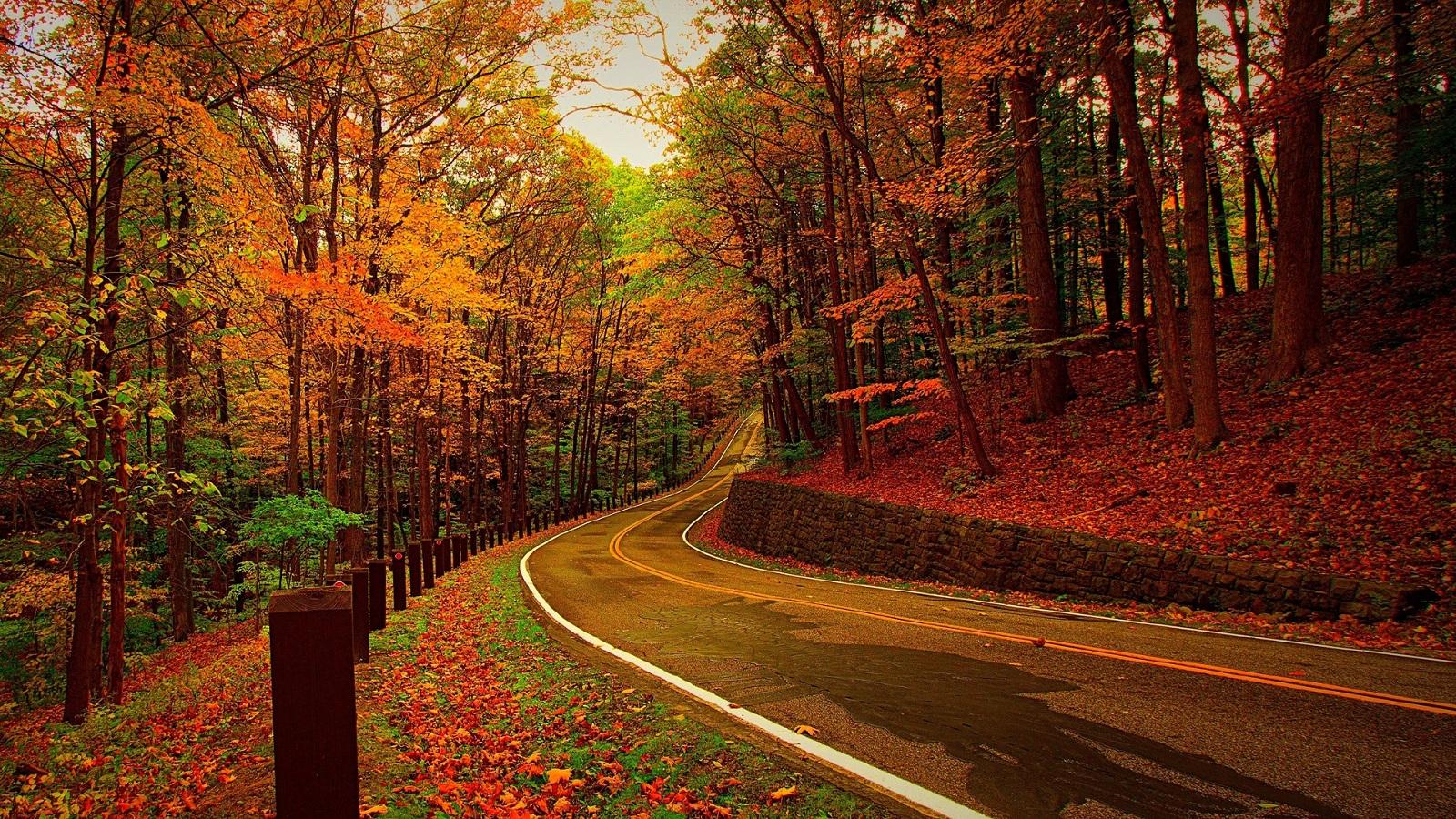 【听客】林语堂,我偏爱的季节