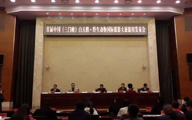 首届中国(三门峡)白天鹅·野生动物国际摄影大展12月7日开幕