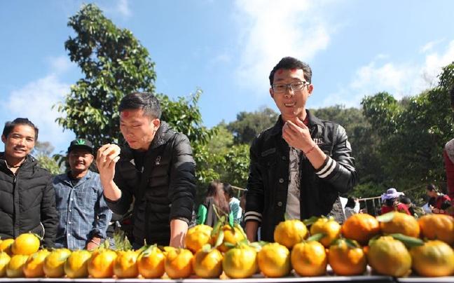 云南普洱上演首个橘子主题跑 市民5分钟狂吃15个橘子