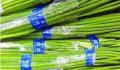 胶带捆蔬菜 接触部分甲醛严重超标
