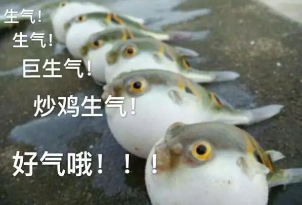"""女人 天津 上海 眼睛/""""西安东线一日游""""为什么那么黑?"""