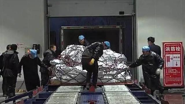 沈阳桃仙国际机场获批进口肉类指定口岸