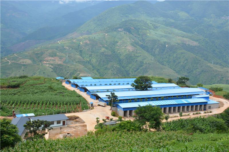 红河:抓产业到户 助推县域经济发展取得新突破