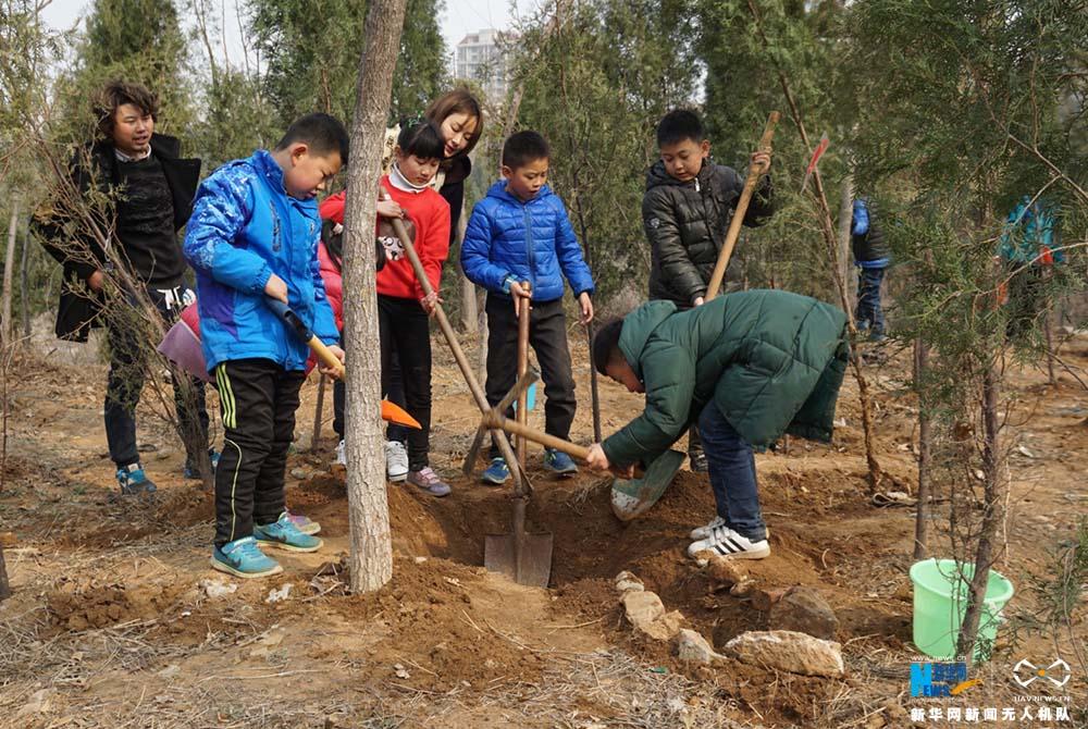 """航拍济南""""志愿林""""建设活动:全民植绿为泉城"""